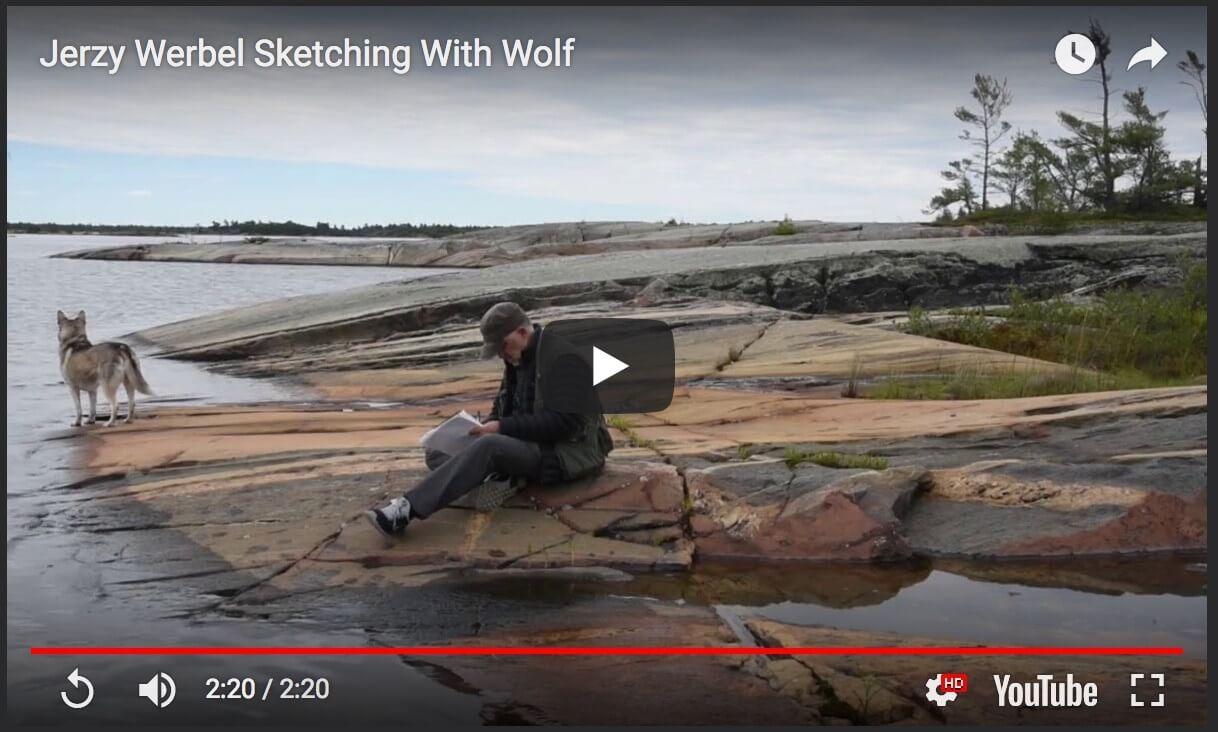 Jerzy Werbel Sketching With Wolf