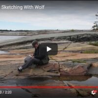 Jerzy Werbel Sketching With Wolf