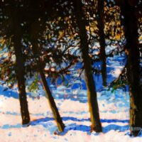 RD Murray Winter Sparkle 16x20RD Murray Winter Sparkle 16x20